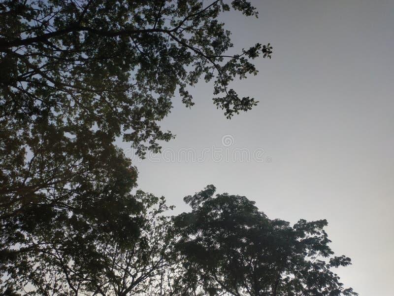 rezydencja królewska surabaya East java Indonezja pusta droga asfaltowa fotografia stock