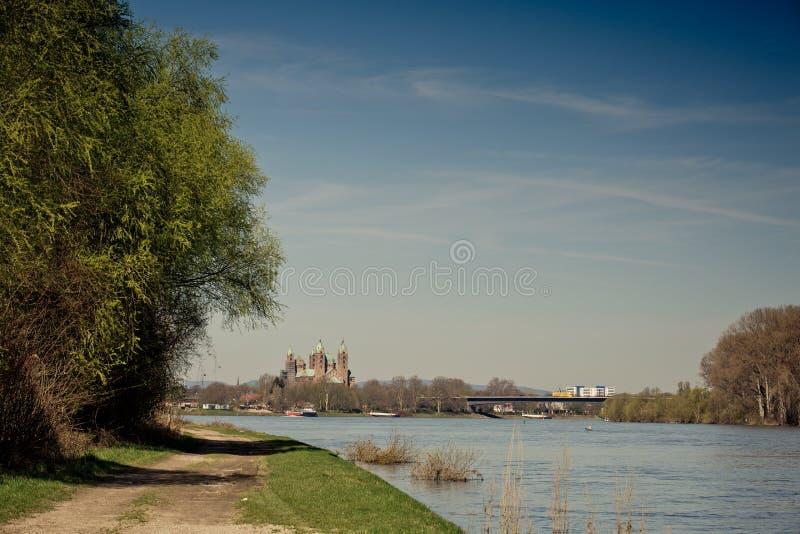 Rhein und Kathedrale bei Speyer lizenzfreie stockfotografie