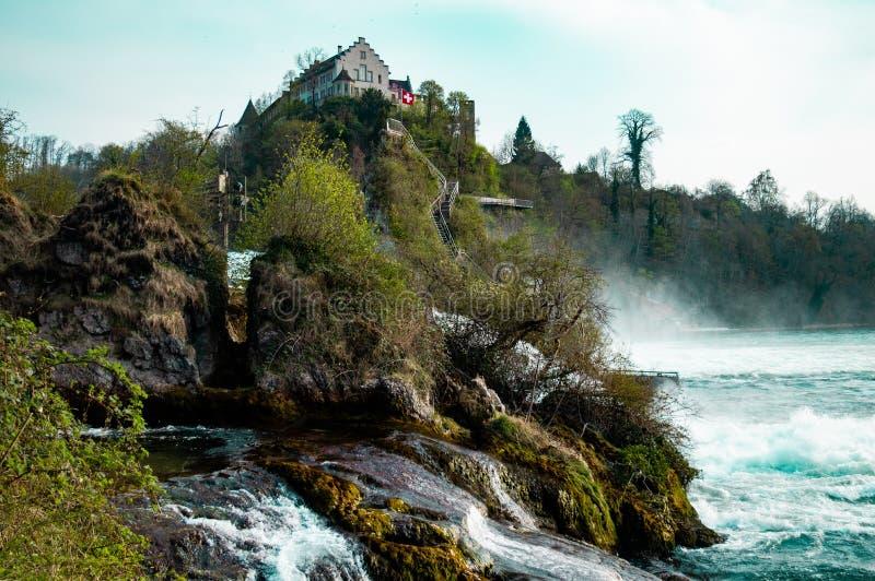 Rheinfalls - Schweiz - bild 2 arkivfoton