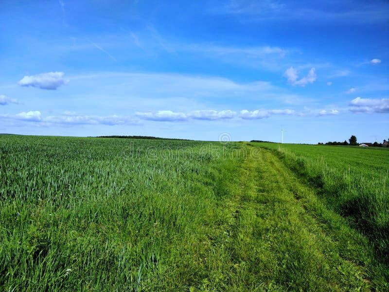 Rheinland-Pfalz Landschaft stockfotografie