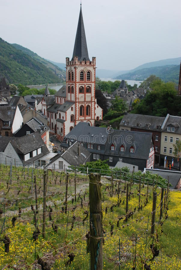 Rhine valley - hills, old town, vineyards royalty free stock image