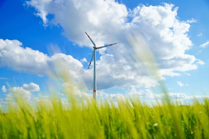 View of wind turbine through the green grass. The image of a wind mill through a grain field. royalty free stock image
