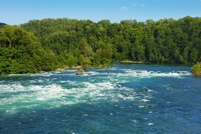 Rhinet River precis ovanför den Rhine Falls vattenfallet i Schweiz arkivfoton