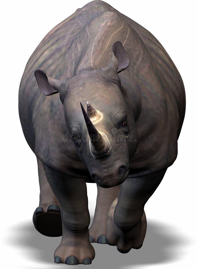 Free Rhino Stock Images - 550534