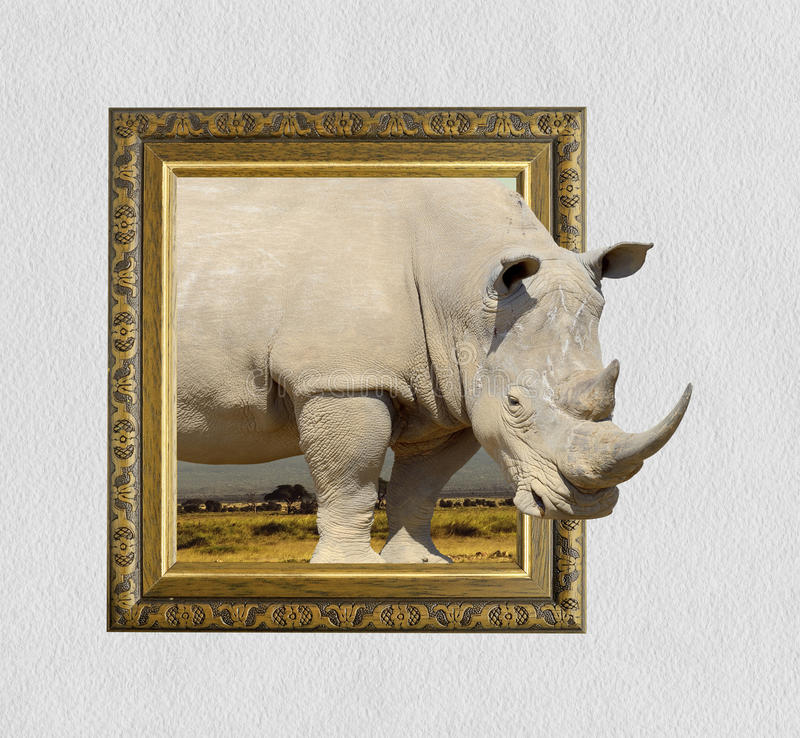 Rhino In Frame With 3d Effect Stock Image - Image of gallery, photo ...
