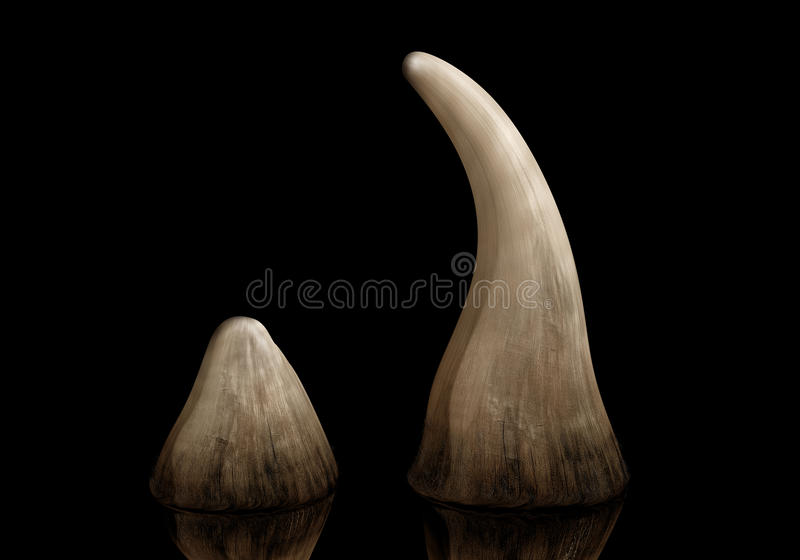 Rhino horn royalty free illustration