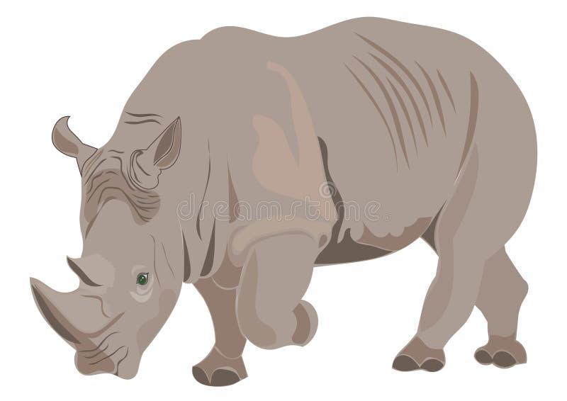 Rhino illustration vector illustration