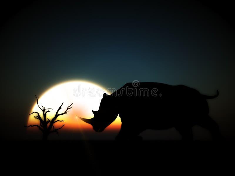 Rhino Wildlife 9 stock photography