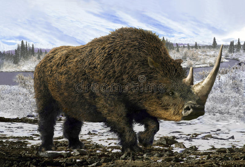 Rhinocéros laineux illustration de vecteur