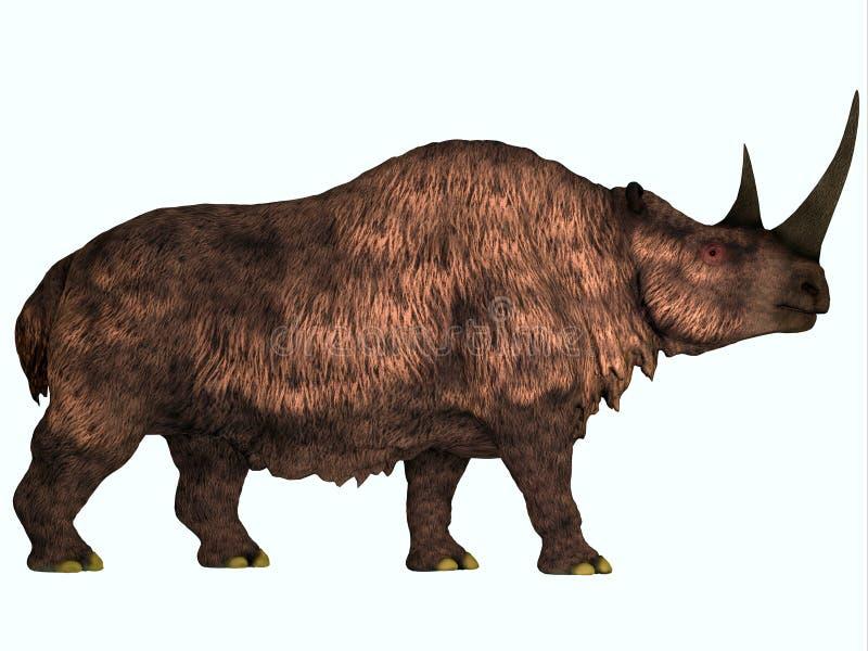 Rhinocéros laineux sur le blanc illustration stock