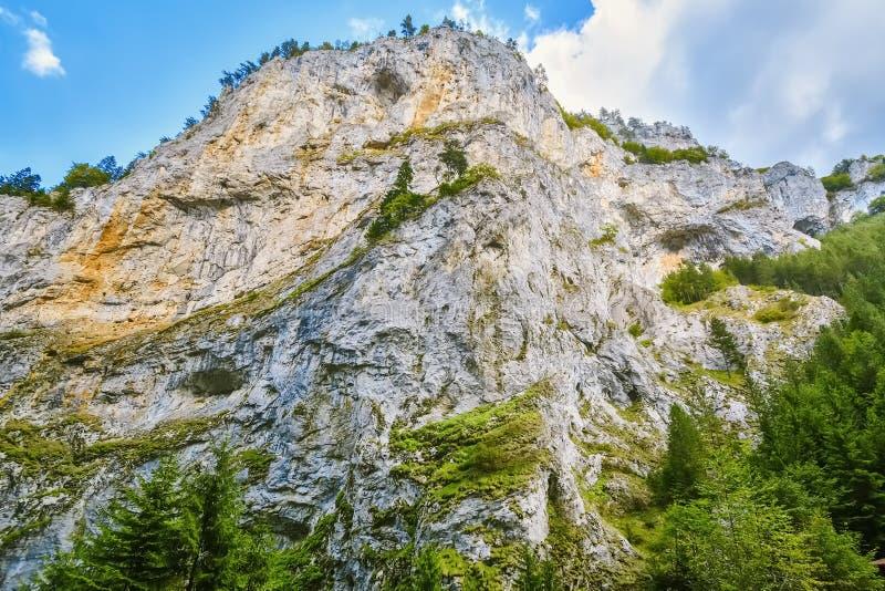 Rhodope Mountains in Bulgaria. Trigrad Gorge, Rhodope Mountains in Southern Bulgaria, Southeastern Europe stock photo
