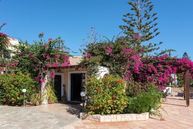 RHouse μεταξύ των πράσινων εγκαταστάσεων στο νησί της Κρήτης, Ελλάδα στοκ εικόνα με δικαίωμα ελεύθερης χρήσης
