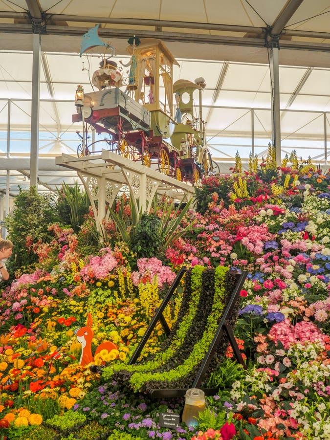 RHS Chelsea Flower Show 2017 Várias flores na exposição do vencedor de medalha do ouro no grande Pavillion imagens de stock