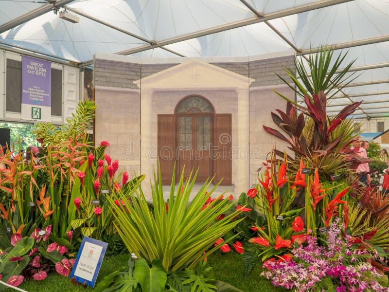 RHS Chelsea kwiatu przedstawienie 2017 Barbados społeczeństwa Ogrodniczy pokaz przy Wielkim pawilonem obraz stock