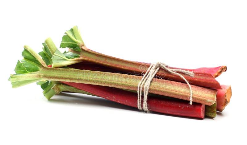 Rhubarb Stock Photo