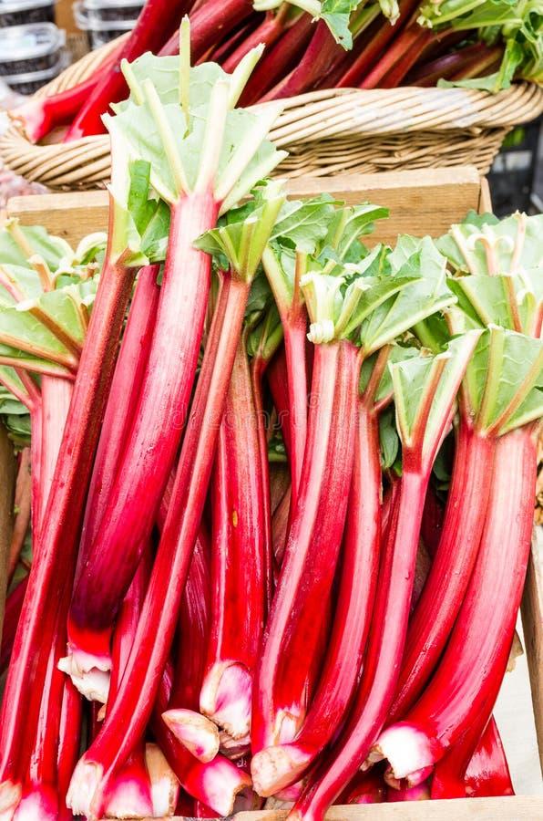 Rhubarb stalks on display at the market