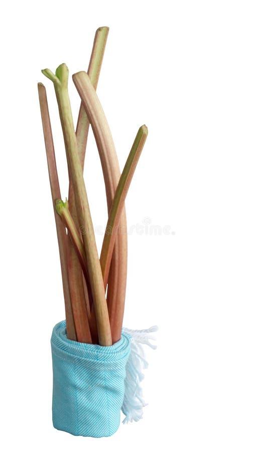 Rhubarb stalks isolated stock photos