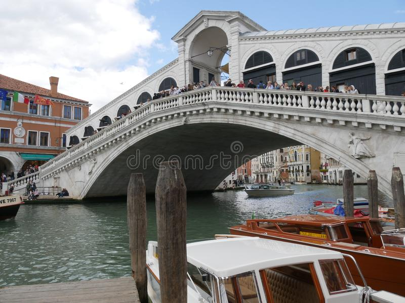 rialto venice моста стоковые фото