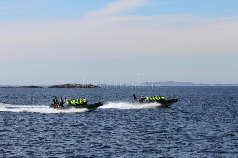 Rib Safari race on Lofoten islands. Rib safari to watch sea eagles, whales and the famous trollfjord Lofoten Islands, Arctic Norway royalty free stock photos