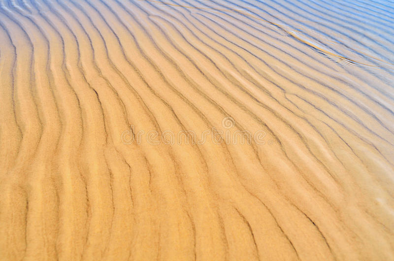 Download Ribbed stock photo. Image of reflect, seaside, nobody - 27923176
