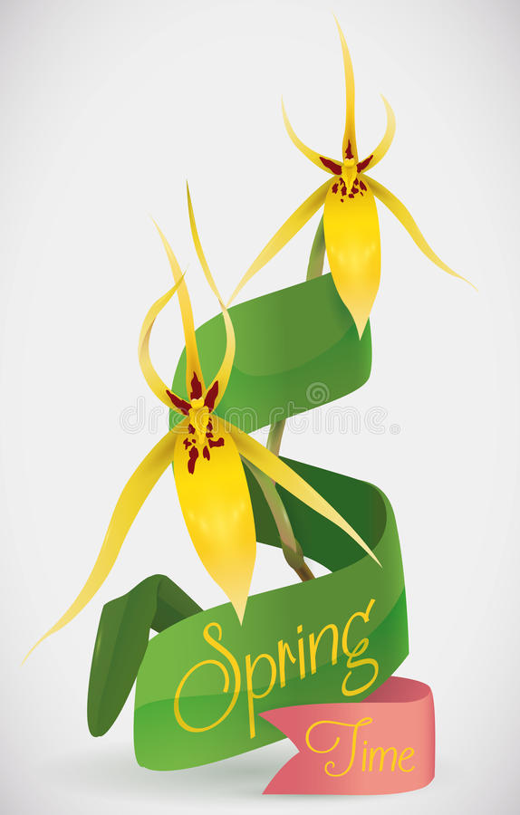 Ribbons and Yellow Orchids for Springtime, Vector Illustration royalty free stock photos