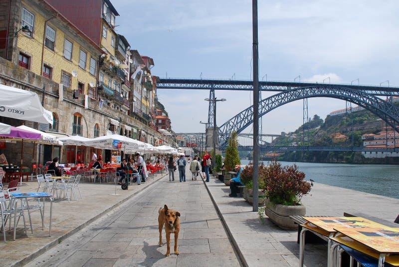 Ribeira District in Porto, Portugal royalty-vrije stock afbeelding
