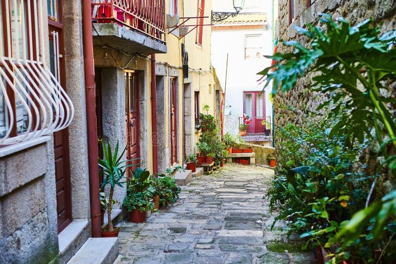 Ribeira gammal stad av Porto i Portugal, att slutta, den smala medeltida gr?nden och traditionella hus, historisk stadsmitt arkivfoton