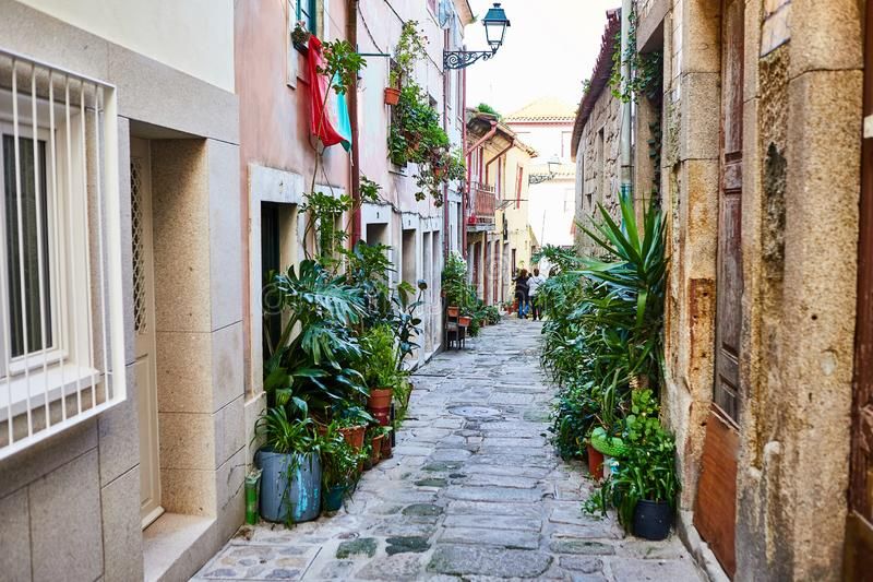 Ribeira Stary miasteczko Porto w Portugalia, pochylaniu, przesmyku, ?redniowiecznej alei i tradycyjnych domach, historyczny centr zdjęcie stock