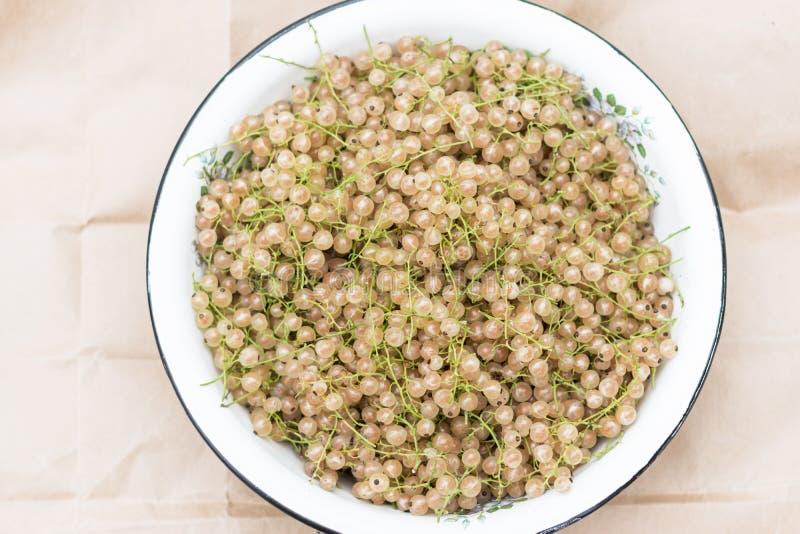 Ribes bianco riunito nella ciotola fotografie stock libere da diritti