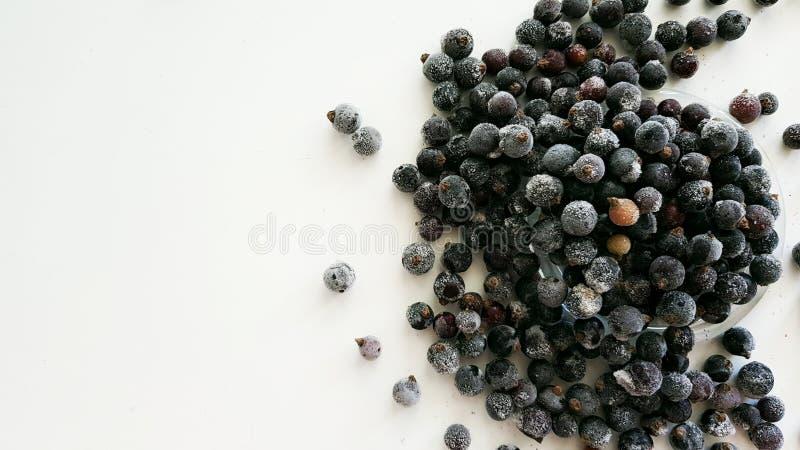 Ribes nero congelato immagine stock libera da diritti