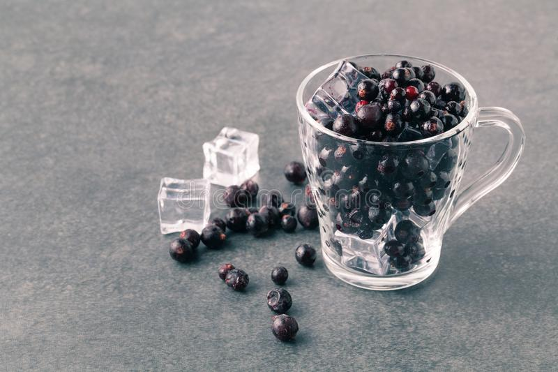 Ribes nero congelato delle bacche immagine stock libera da diritti