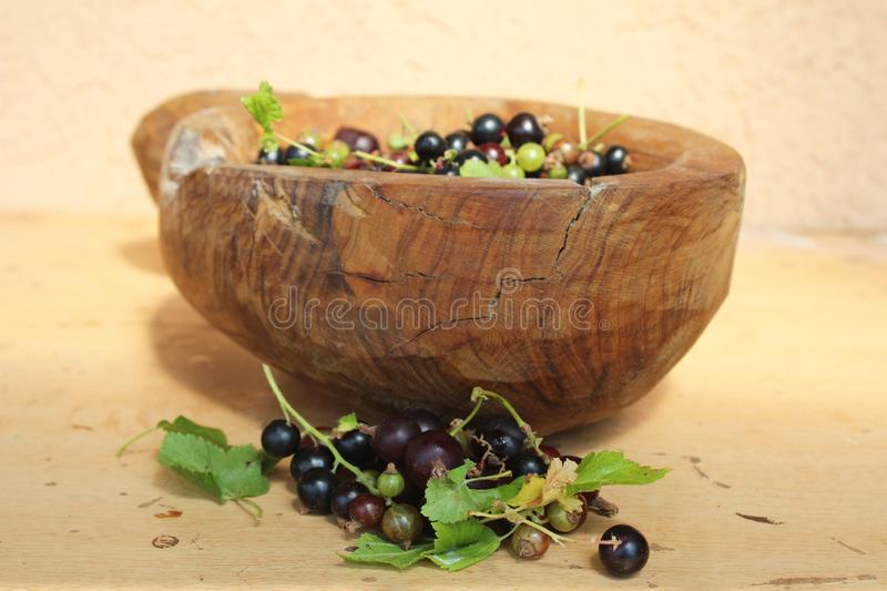 Ribes nigrum commonly The blackcurrant or black currant in a wooden pot on wooden background, in artistic Still life style. Macro photography royalty free stock image