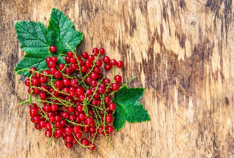 Ribes rosso maturo su un bordo di legno Ribes bagnato fresco Ribes con le gocce Vecchio fondo di legno e bacche rosse immagine stock