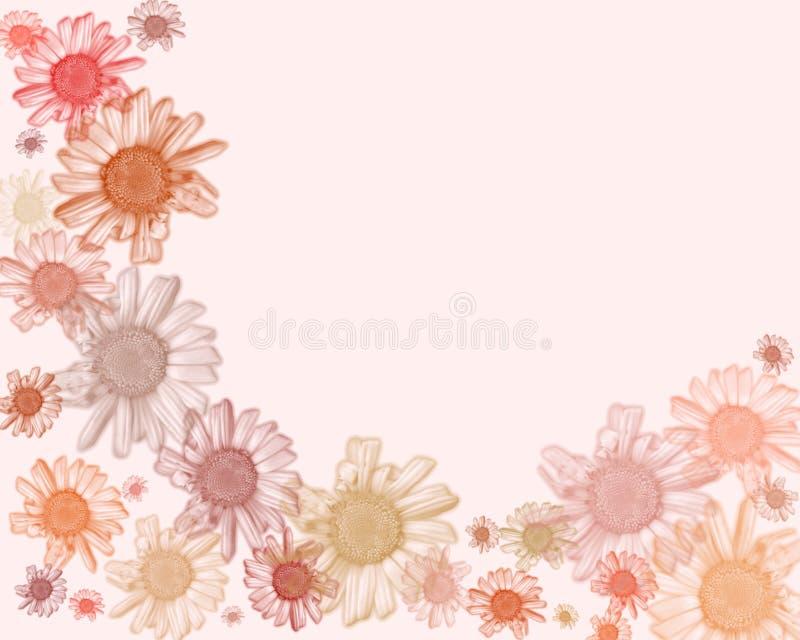 Ribete/fondo en colores pastel de la margarita libre illustration