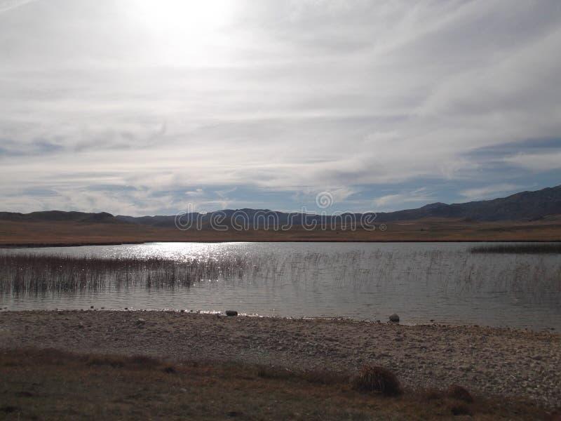 Riblje sjön arkivbilder