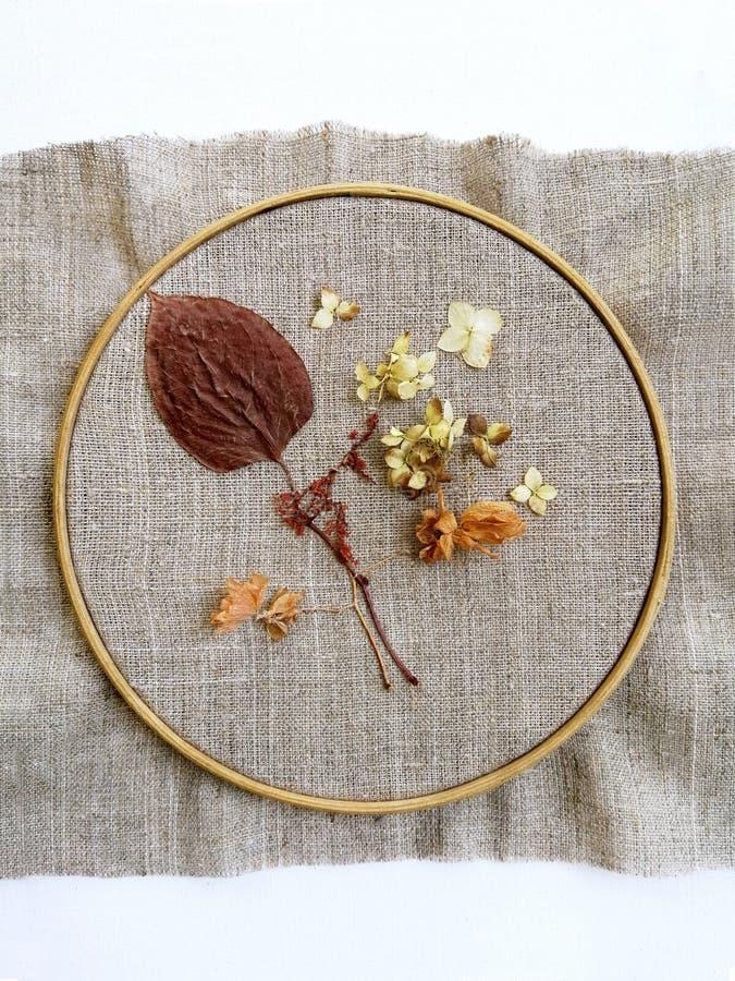 Ricamo su tela e sul cerchio, cucito dai fiori asciutti dell'ortensia e foglie, punti fatti a mano fotografie stock