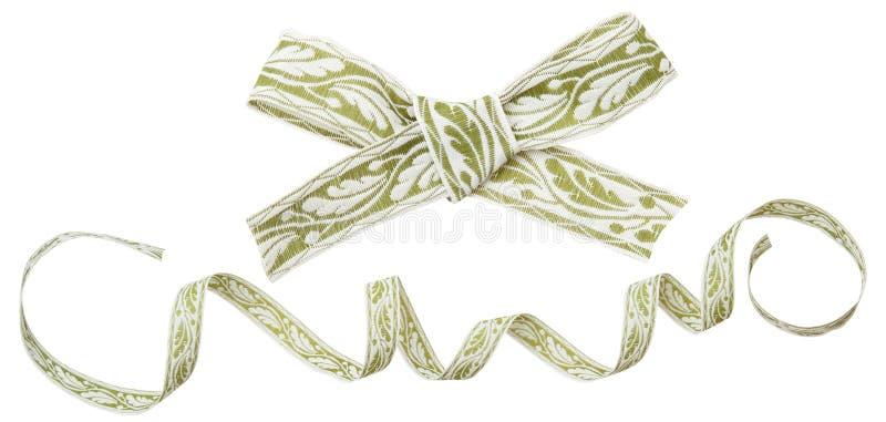 Ricciolo del nastro con il modello verde isolato su fondo bianco fotografia stock libera da diritti