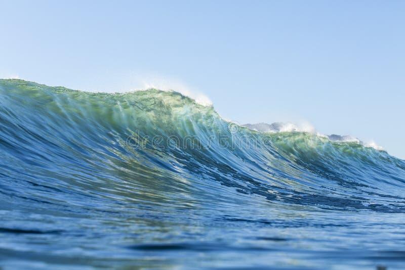 Ricciolo di Wave immagini stock libere da diritti