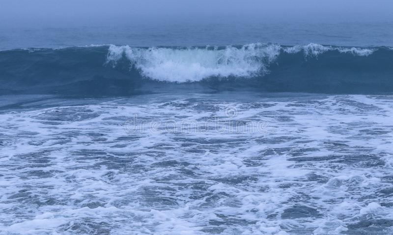 Ricciolo di Wave come si avvicina alla riva fotografia stock libera da diritti