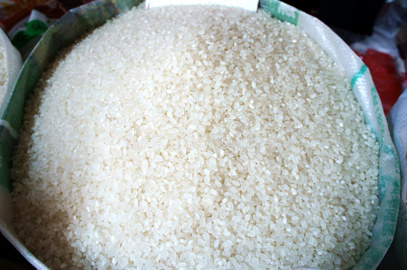 Download Rice stock image. Image of meal, grained, lunch, dietary - 20323403