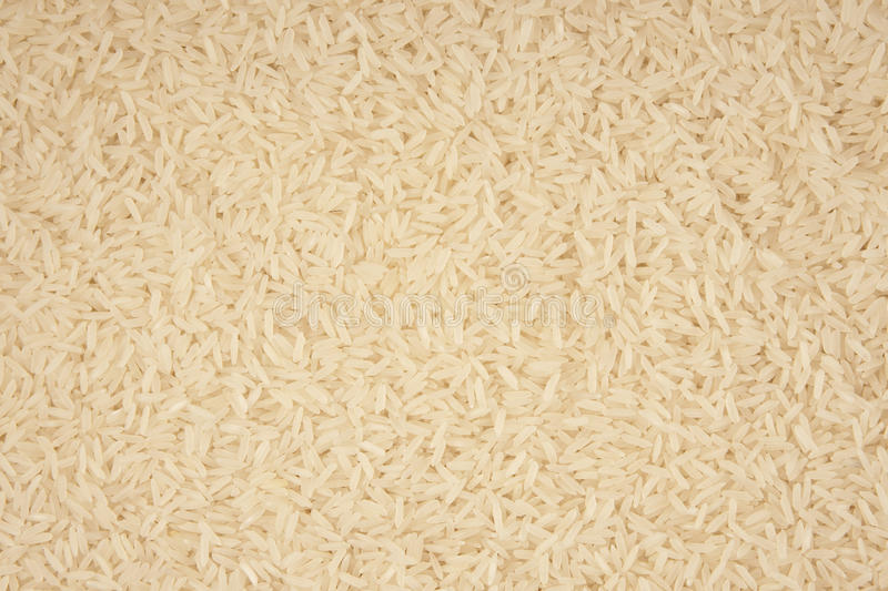 Download Rice stock image. Image of nutrition, healthy, glutinous - 21777567