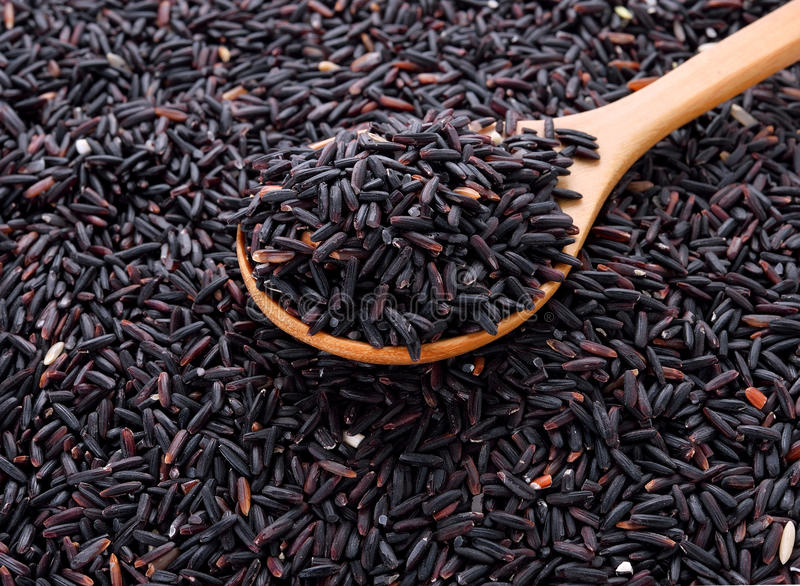 Rice berry rice with wooden spoon royalty free stock photo