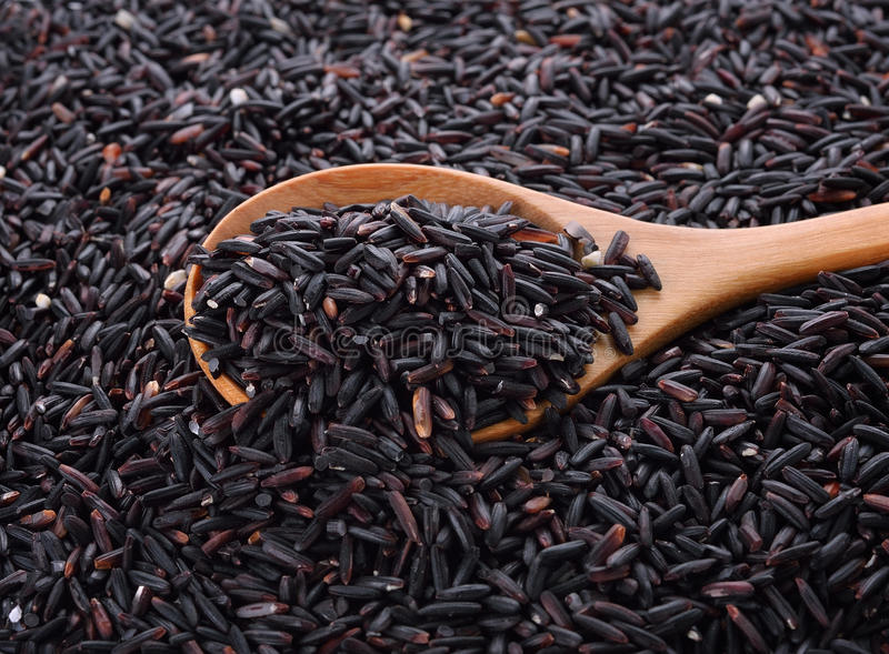 Rice berry rice in wooden spoon royalty free stock images