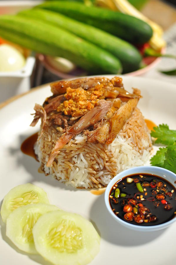 Download Rice with brown sauce duck stock image. Image of aroma - 25847617