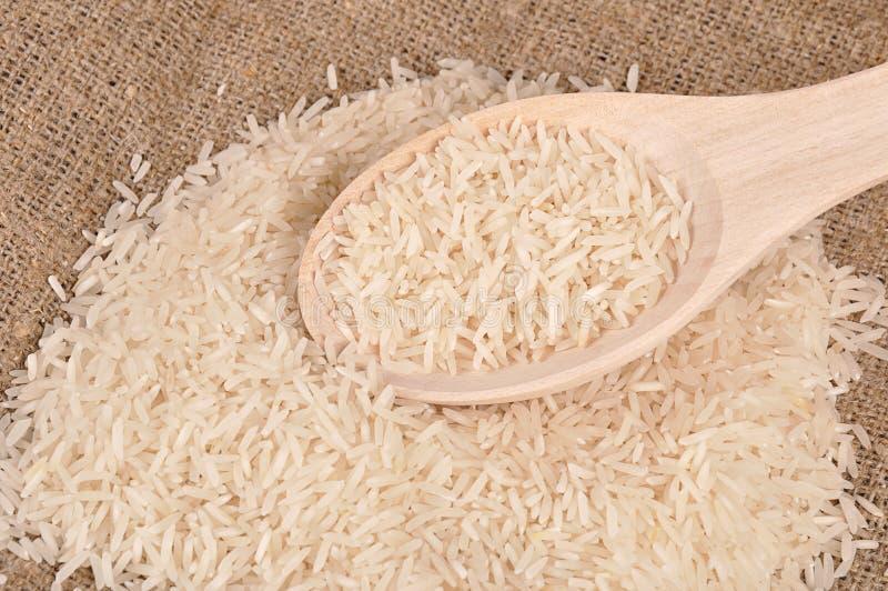 Rice on the canvas stock photos