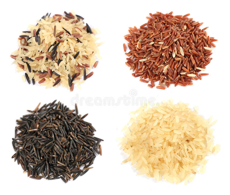 Download Rice collection stock photo. Image of food, oriental - 25076564