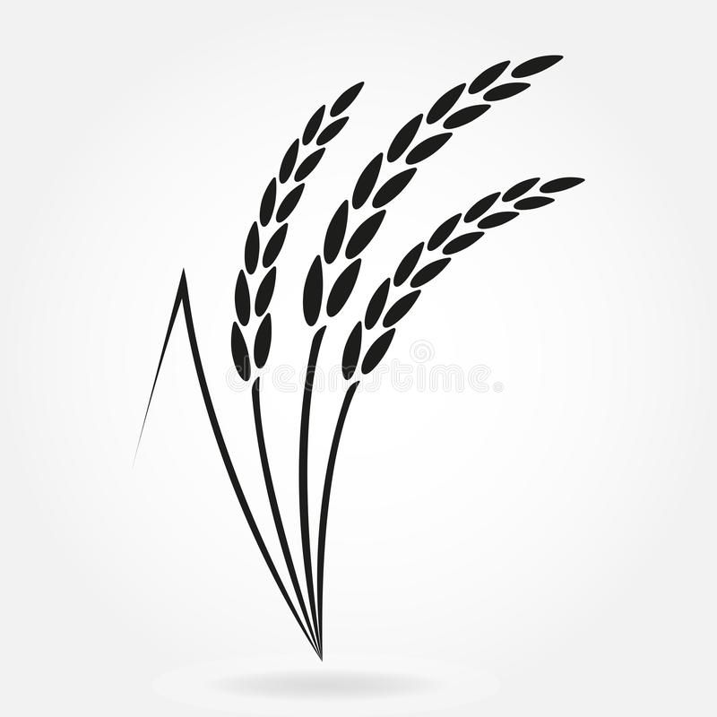 Rice. Crop symbol. Rice or Wheat ears design element. Agriculture grain. Vector illustration. stock illustration