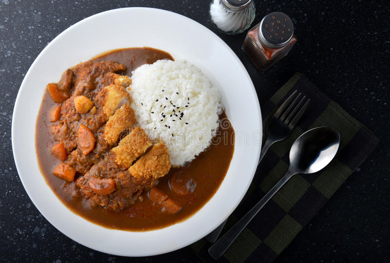 Rice with deep fried pork and curry . royalty free stock images