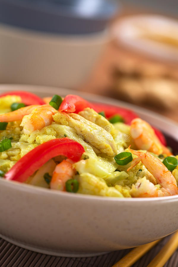 Download Rice Dish With Cabbage, Chicken And Shrimp Stock Image - Image: 26507101