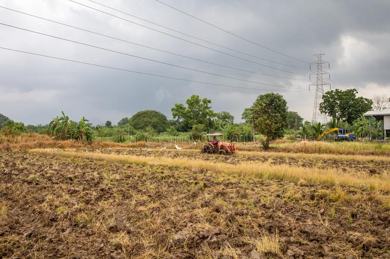Rice farm during harvesting in Thailand. Rice farm during harvest by combining truck in rurul contryside of Thailand stock photos